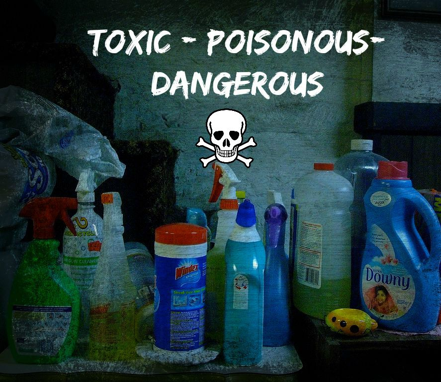 Toxic Cleaners 2