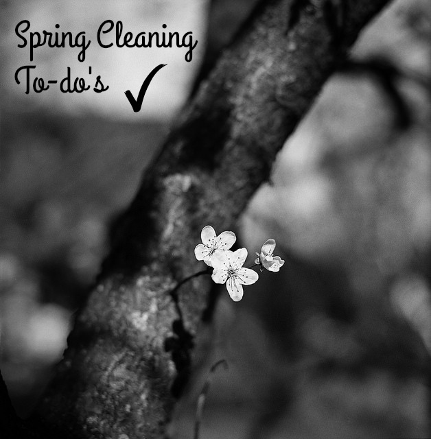 Spring Cleaning To-do's