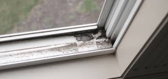 Clean Your Window Track With This Quick And Easy Methods